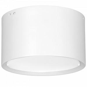 DOWNLIGHT LED white 0891 Luminex